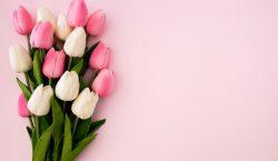 Benvenuta primavera… la stagione dell'amore!